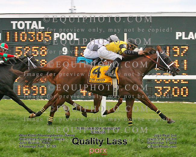 Quality Lass #4 with John Bisono riding won the $200,000 Turf Amazon Handicap at Parx Racing in Bensalem, Pennsylvania September 1, 2014 Photo by  EQUI-PHOTO
