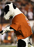 The Chick Fil-A mascot watches a fan try to kick a field goal to win some prizes during the Texas A & M vs. Texas Longhorns football game at the Darrell K Royal - Texas Memorial Stadium in Austin, Tx. Texas A & M defeats Texas 24 to 17....