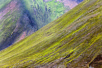 Volcanic mountain slope, Iceland