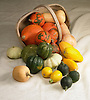 vegetables cascading from a basket. Including pumpkins, sweet potato, squash and lemons.
