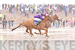 Action from a very wet Glenbeigh Races on Saturday afternoon.   Copyright Kerry's Eye 2008
