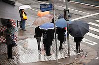 SAO PAULO, 16 DE JULHO DE 2012 - CLIMA TEMPO - Chuva faz a temperatura cair nesta manha de segunda-feira,16, na zona norte da cidade.  FOTO RICARDO LOU - BRAZIL PHOTO PRESS