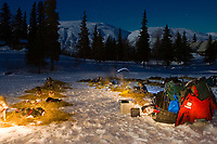 S.Schnuelle & P.Gebhardt tend to their dogs under the moonlight at the Finger Lake checkpoint on Monday morning