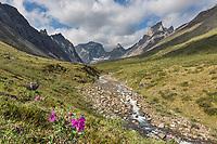 Arrigetch Peaks, Caliban, Arial and Xanadu peaks, Gates of the Arctic National Park, Alaska