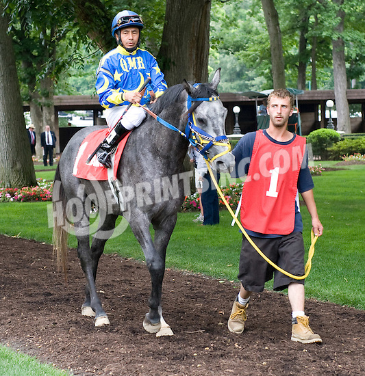 Burnin Rubber before The Alec Courtelis Arabian Juvenile Stakes at Delaware Park on 7/4/11