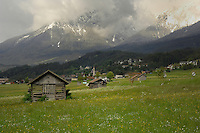 Cattlesheds and town of Tarrenz, Imst district, Tyrol/Tirol, Austria, Alps.