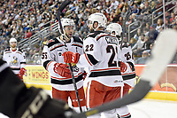 HERSHEY, PA - JANUARY 05: Grand Rapids Griffins right wing Matthew Ford (55) and Grand Rapids Griffins center Wade Megan (22) celebrate after a goal during the Grand Rapids Griffins vs. Hershey Bears AHL game at the Giant Center in Hershey, PA. (Photo by Randy Litzinger/Icon Sportswire)