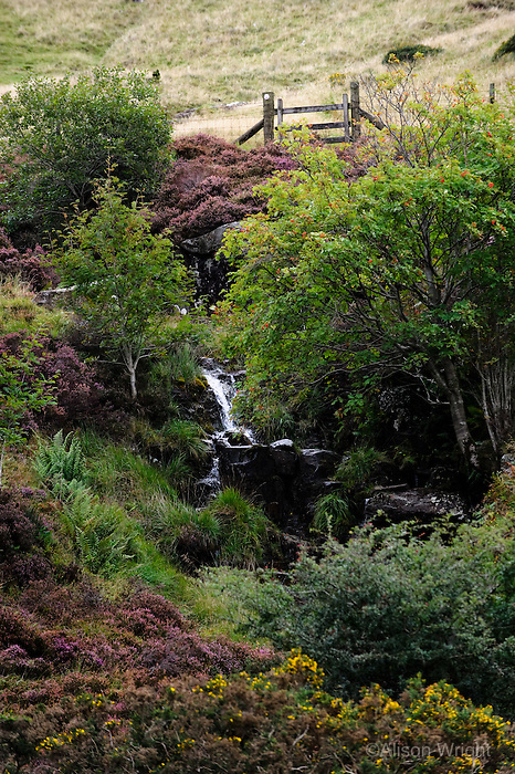 The moors of Brecon Beacons National park, Welsh border.