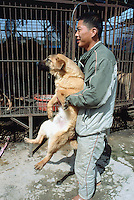 Korea. South Korea. Kimje area. Wonpyong. Dog market for dog meat. Worker carries in his arms a  dog just bought and transfers it to another cage on the retailer's car. Dog sale. Dog meat is a delicatessen of korean traditionnal cooking. © 2002 Didier Ruef