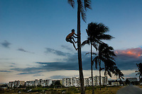 "A young Cuban boy climbs a palm tree in front of the large concrete apartment blocks in Alamar, a huge public housing complex in the Eastern Havana, Cuba, 12 February 2009. The Cuban economic transformation (after the revolution in 1959) has changed the housing status in Cuba from a consumer commodity into a social right. In 1970s, to overcome the serious housing shortage, the Cuban state took over the Soviet Union concept of social housing. Using prefabricated panel factories, donated to Cuba by Soviets, huge public housing complexes have risen in the outskirts of Cuban towns. Although these mass housing settlements provided habitation to many families, they often lack infrastructure, culture, shops, services and well-maintained public spaces. Many local residents have no feeling of belonging and inspite of living on a tropical island, they claim to be ""living in Siberia""."