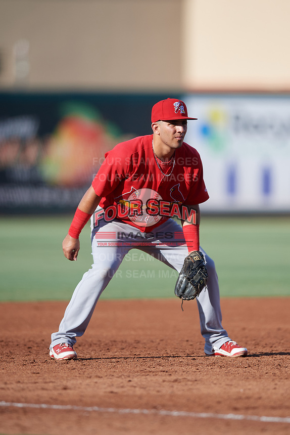Palm Beach Cardinals third baseman Jose Martinez (12) during a game against the Jupiter Hammerheads on August 4, 2018 at Roger Dean Chevrolet Stadium in Jupiter, Florida.  Palm Beach defeated Jupiter 7-6.  (Mike Janes/Four Seam Images)