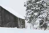 snow covered barn yard