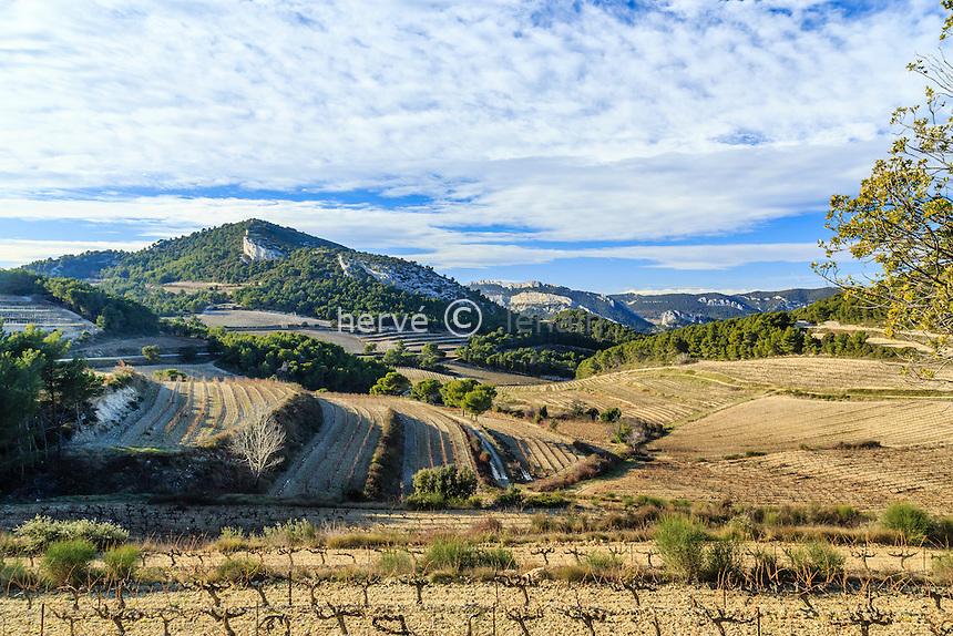 France, Vaucluse (84), La Roque-Alric, le vignoble en hiver et les Dentelles de Montmirail au loin