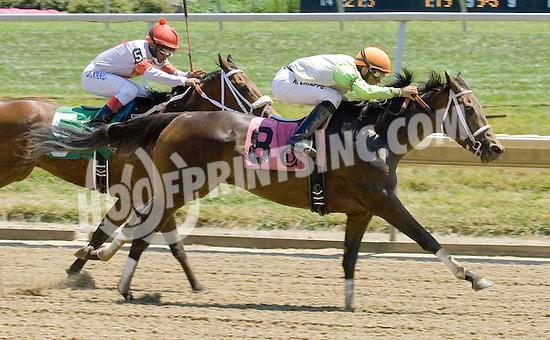 Vivendi's Verdict winning at Delaware Park on 7/16/11