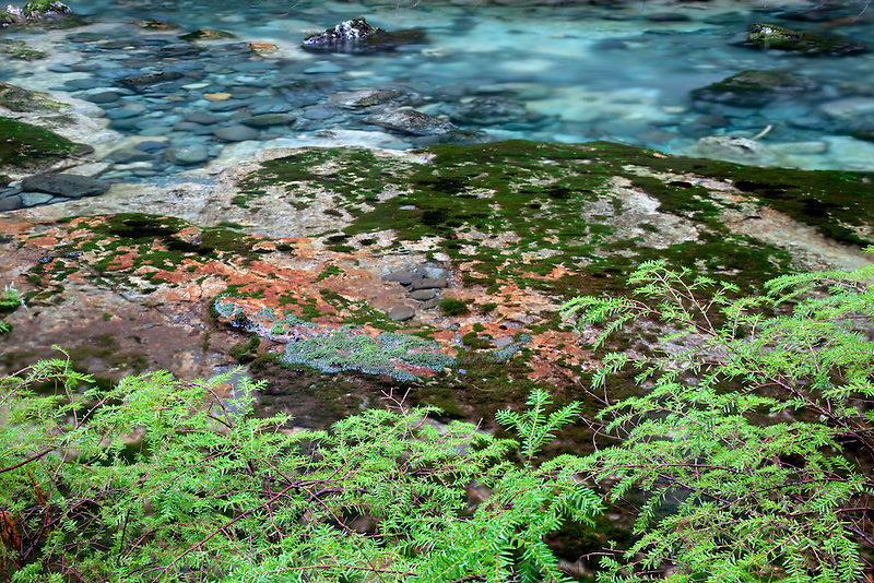 Little North Fork Santiam River with colorful rocks and pools. Opal Creek Scenic Recreation Area, Oregon
