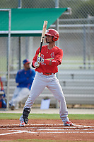 GCL Cardinals pinch hitter Eliezer Alvarez (13) at bat during a game against the GCL Mets on July 23, 2017 at Roger Dean Stadium Complex in Jupiter, Florida.  GCL Cardinals defeated the GCL Mets 5-3.  (Mike Janes/Four Seam Images)