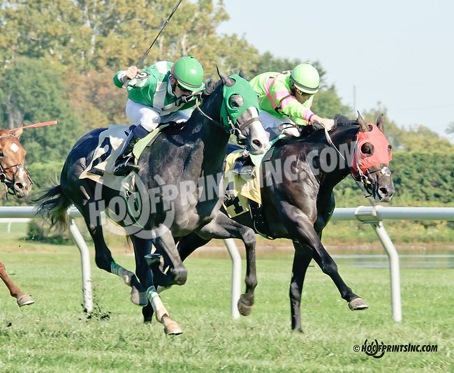 Max Crown winning at Delaware Park on 9/27/14