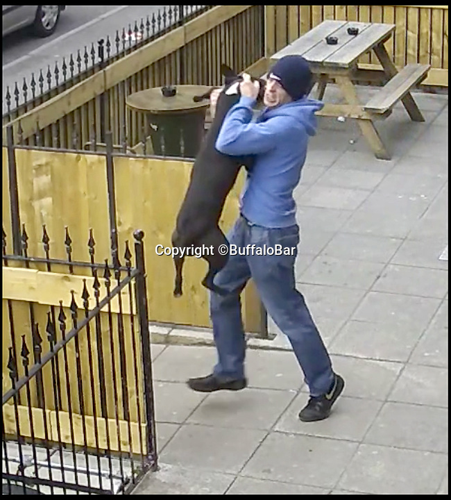 BNPS.co.uk (01202 558833)<br />Pic:   BuffaloBar/BNPS<br /> <br /> CCTV still image showing the thug walking out of the bar, holding the dog around the neck.<br /> <br /> The shocking moment a thug rams his pet dog head-first into a fence and repeatedly punches it has been caught on CCTV.<br /> <br /> The yob owner became angry that the black pitbull-type dog ran off into the front garden of a bar.<br /> <br /> After catching up with the animal, the man grabbed it by the neck and slammed it into the wooden fence.
