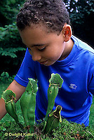 CA18-047z  Pitcher Plant - boy examining plant