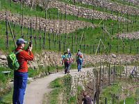 Am Algunder Waalweg, Algund-Lagundo, Provinz Bozen &ndash; S&uuml;dtirol, Italien<br /> Hiking Trail Algunder Waalweg, Algund-Lagundo, province Bozen-South Tyrol, Italy