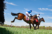 4th Virginia Equine Alliance Maiden Hurdle - Sportswear