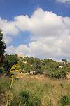 Israel, Jerusalem Mountains, Ein Mata area