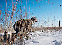 Web Editor for Ducks Unlimited Chris Jennings (cq) stalks wild turkey during a hunt near Grand Island, Nebraska, Saturday, December 4, 2011. ..Photo by Matt Nager