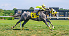 Smokinwatchstopper winning at Delaware Park on 8/29/16