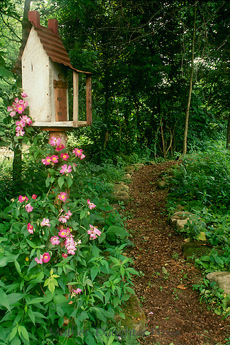 Birdhouse next to woodland path