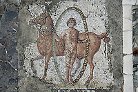 Detail of a mosaic depicting a man with a hoop and a horse in the Villa of the Aviary, Carthage, Tunisia, pictured on January 27, 2008, in the afternoon. Carthage was founded in 814 BC by the Phoenicians who fought three Punic Wars against the Romans over this immensely important Mediterranean harbour. The Romans finally conquered the city in 146 BC. Subsequently it was conquered by the Vandals and the Byzantine Empire. Today it is a UNESCO World Heritage. The Roman Villa of the Aviary, with its octagonal garden set in a peristyle courtyard, is known for its fine mosaics depicting birds. Picture by Manuel Cohen.