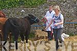 at the kingdom county fair at Ballybeggan park, Tralee on Sunday.