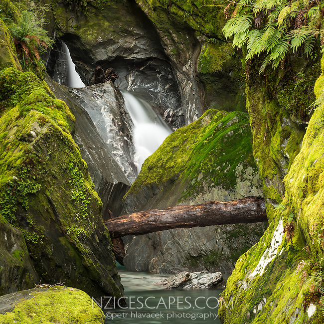 Scenic waterfall of Robinson Creek in native forest near Haast Pass, Mt. Aspiring National Park, UNESCO World Heritage Area, Central Otago, New Zealand, NZ