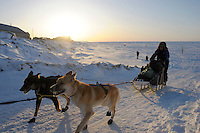 Iditarod musher Sonny Lindner along Bering Sea near Nome, Alaska.