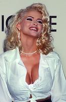 Anna Nicole Smith, 1993, Photo By Michael Ferguson/PHOTOlink