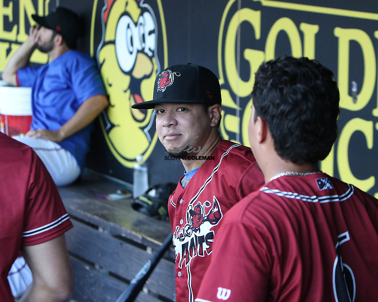 Round Rock Express left fielder Carlos Arroyo in the dugout during the Minor League Baseball game between the Round Rock Express, wearing promotional Round Rock Fire Ants jerseys, and the Fresno Grizzlies at Dell Diamond in Round Rock on Thursday, July 21, 2016. Round Rock won 3-0.
