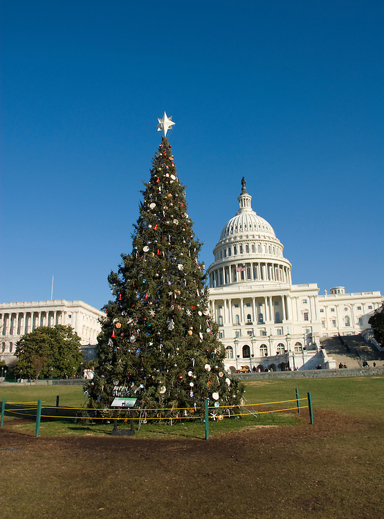 Washington DC; USA: Christmas Tree outside the Capitol.Photo copyright Lee Foster Photo # 17-washdc76141