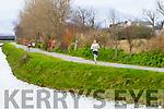 Denis O'Brien runners at the Kerry's Eye Tralee, Tralee International Marathon and Half Marathon on Saturday.