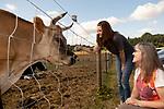 071319 Animal Law
