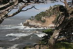 Point Lobos S.R., CA.  3-12-12 Edit
