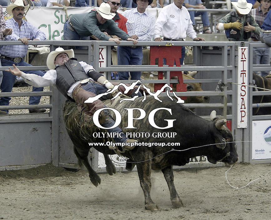 29 August, 2004:  PRCA Rodeo Bull Rider Mickey Nelson riding during the PRCA 2004 Extreme Bulls competition in Bremerton, WA.
