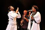 La chanteuse egyptienne Etenesh Wassie, le Tigre des Platanes et le danseur Melaku Belay en concert..Ref : ETENESH_WASSIE_ET_LE_TIGRE_DES_PLATANES_012.jpg - © Feeloo.