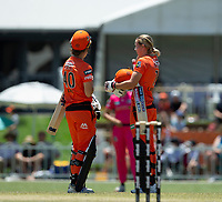 24th November 2019; Lilac Hill Park, Perth, Western Australia, Australia; Womens Big Bash League Cricket, Perth Scorchers versus Sydney Sixers; Meg Lanning and Amy Jones of the Perth Scorchers meet in the middle of the pitch during their partnership - Editorial Use