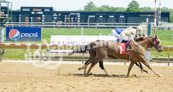 Bid Till Included winning at Delaware Park on 5/31/12