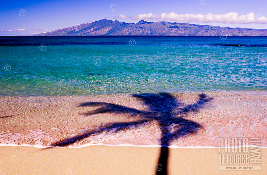 A palm tree shadow on the beach at Napili Bay , Maui with the island of Molokai in the distance.