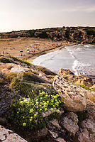Calamosche Beach at sunset, near Noto, Vendicari Nature Reserve, South East Sicily, Italy, Europe. This is a panoramic photo of Calamosche Beach at sunset. Calamosche Beach is the most popular beach near Noto and is located in the Vendicari Nature Reserve, South East Sicily, Italy, Europe.