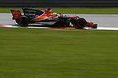 30th September 2017, Sepang, Malaysia;  FIA Formula One World Championship 2017, Grand Prix of Malaysia, #14 Fernando Alonso (ESP, McLaren Honda)