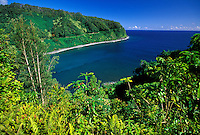 Clean lush famous road to Hana on the island of Maui
