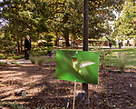 October 26, 2017. Raleigh, North Carolina.<br /> <br /> A hummingbird photograph awaits the arrival of the garden dedication attendees. <br /> <br /> A new garden designed by Ben Skelton containing native Plants For Birds was dedicated at the North Carolina Executive Mansion.