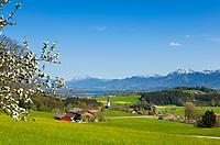 Deutschland, Bayern, Oberbayern, Chiemgau, Rimsting: Blick von der Ratzinger Hoehe ueber das Bayerische Voralpenland und den Chiemsee in die Chiemgauer Alpen, in der Bildmitte die Kirche des Ortsteils Greimharting | Germany, Upper Bavaria, Chiemgau, Rimsting: view from Ratzinger Hoehe across the Bavarian Alpine Uplands with Lake Chiemsee and the Chiemgau Alps