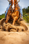 20150827 Kasten Reining Horses